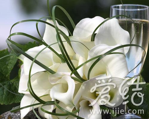 简单优雅的白色新娘手捧