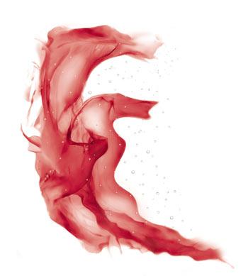 亚特兰大红藻精粹
