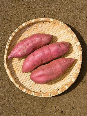 红薯减肥餐单二