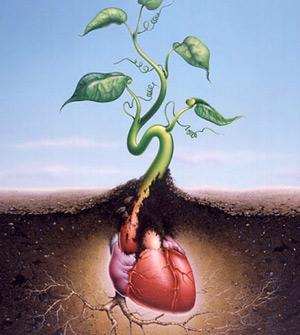 心臟一旦衰老,我們身體的各個部位都會因為供血不足