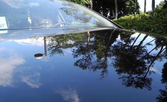 """这可不是湖面啊,仔细看看,不仅想起了腾格尔的那首《天堂》:""""蓝蓝的天空,清清的湖水,绿绿的草原……"""""""