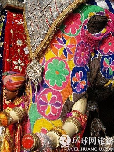 印度大象:彩绘纹身出街选美(组图)