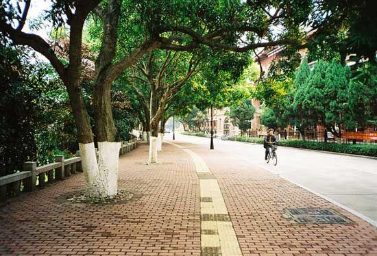 美丽的厦门大学