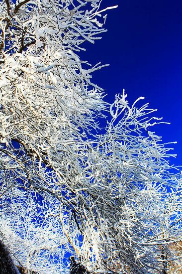 武当金顶的残雪