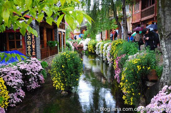 新浪旅游配图:雨中丽江 摄影:静水