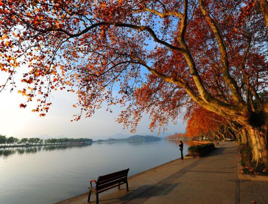 新浪旅游配图:西湖秋景 摄影:杭居易
