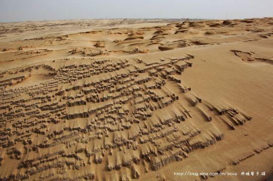探游魔鬼沙漠揭开地狱塔敏查干的面纱
