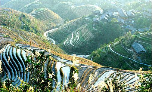 新浪旅游配图:龙脊梯田 摄影:mmjia