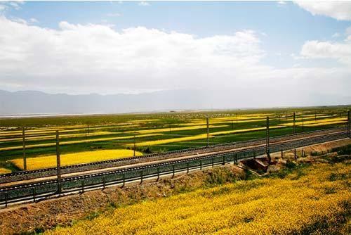 新浪旅游配图:青藏铁路穿行而过 摄影:影子