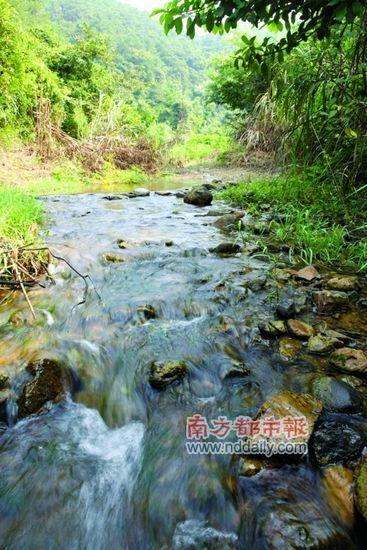 仙龙嘉泉的水质极为透明。
