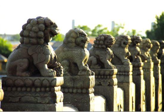 整齐并列的石狮子