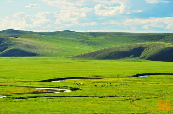新浪旅游配图:美丽的草原 摄影:北角山妖