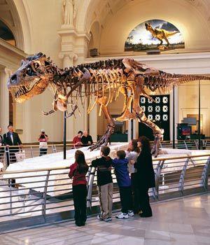 美国博物馆