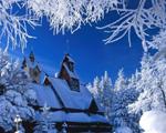 雾凇:童话般的雪世界