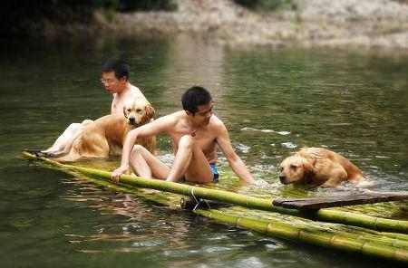 王婆崖非常适合带狗狗一起耍