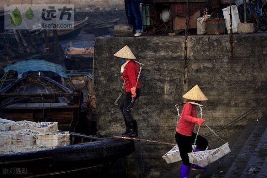 侨港鱼市上忙碌的渔家女 作者:游刃
