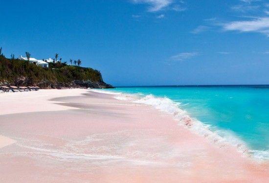 百慕大的粉红色海滩