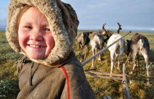 西伯利亚生吃鹿肉的涅涅茨人