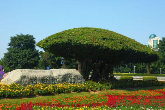 南宁名树博览园入口。(图/ 油海慕冰 新浪博客)