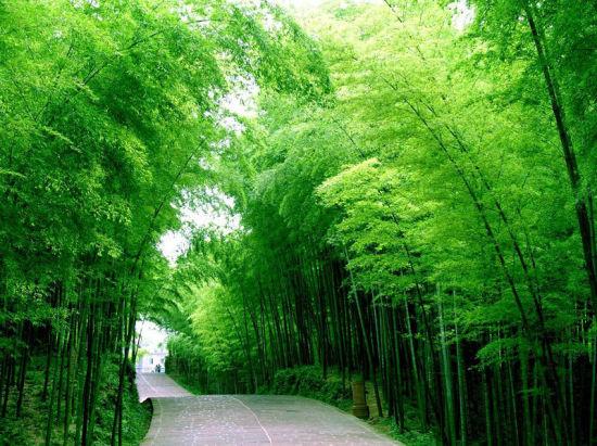 最经典的川南旅游线路 最纯美的