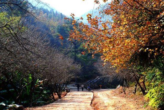 梅灵古道见灵山