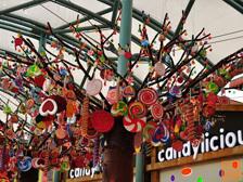 圣淘沙里亚洲最大的糖果店