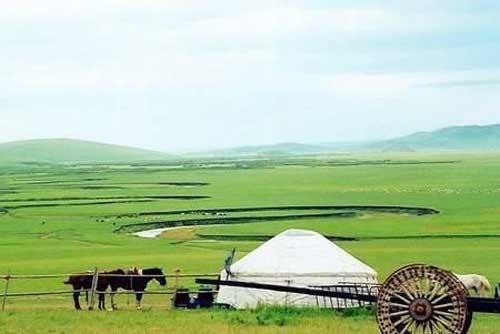 夏营地上的蒙古人家