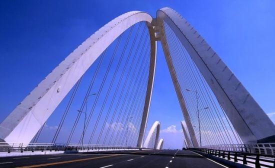 大垸新桥公路规划图