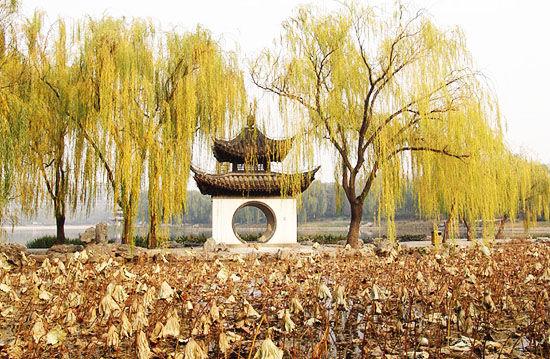 图片:秋天的陶然亭 来源:刘星云的博客