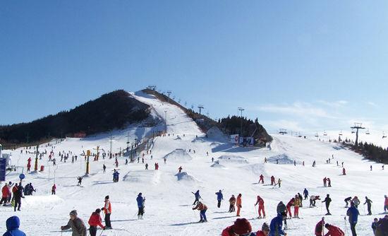 冰雪撒欢季到滑雪最快乐