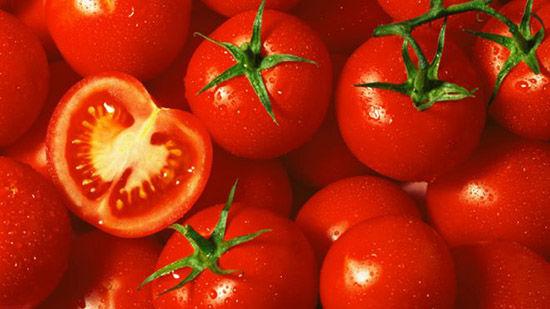 西红柿通矢量图