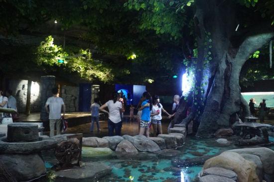 热带丛林馆