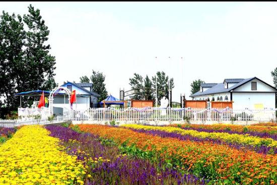 薰衣草庄园