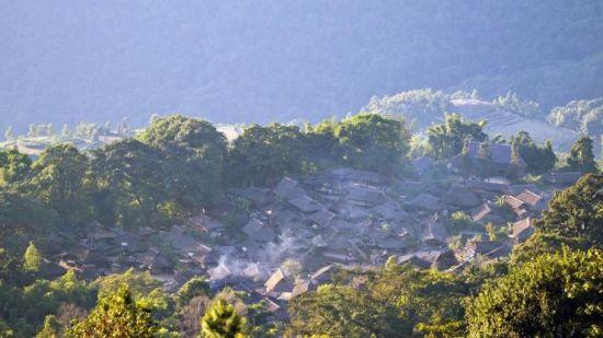 传说佤族村寨周边的树都不能乱砍,树是保护寨子的神灵,每棵树都有自己的灵魂。