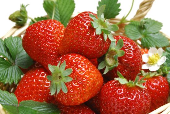 秦灞庄园牛奶草莓位列西安市十大采摘草莓圣地之首。在这里可以采菊东篱下,悠然见南山,还可以漫步在风景秀丽的鲸鱼沟畔,远眺长安,也可以在户外庭院约三五好友、饮清茶一杯   自驾游路线A:半引路---新月路---狄寨南路---白鹿原现代农业服务中心----秦灞庄园;   自驾游路线B:绕城高速纺织城出站口----白鹿原大学城---西安汽车科技学院----狄寨南路---白鹿原现代农业服务中心---秦灞庄园;   公交路线:240路、910路公交车狄寨站下车,再乘坐当地出租摩托车到西塘村秦灞庄园即到。   3.