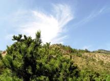 苏峪口森林公园