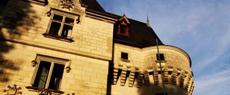 卢瓦尔河谷:住古堡夜寂寥