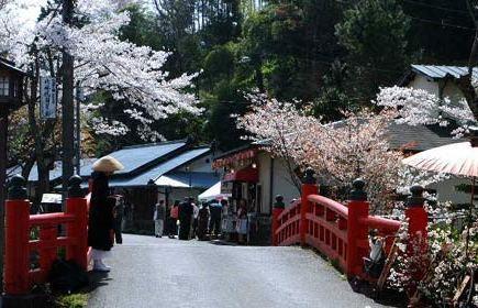 美丽的日本
