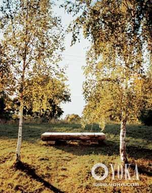 斯德哥尔摩到哥德堡的一路上,瑞典乡村的纯净光线使这幅有着白桦树和长凳的如画美景变得无比明亮。