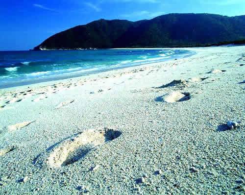 三亚湾海滩