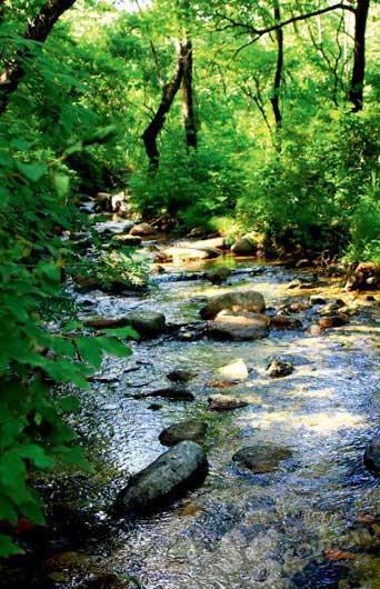 潺潺流水声在山间响起,使得玉渡山更为幽静。