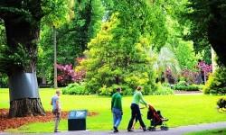 墨尔本皇家植物园 满眼绿色醉心田