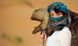 撒哈拉沙漠 住在帐篷里数星星