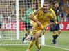 乌克兰1-2瑞典