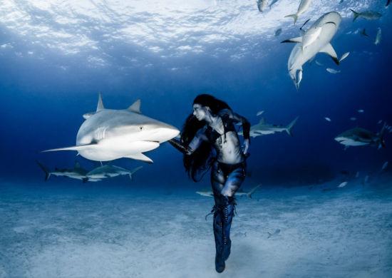 深海十大危险动物