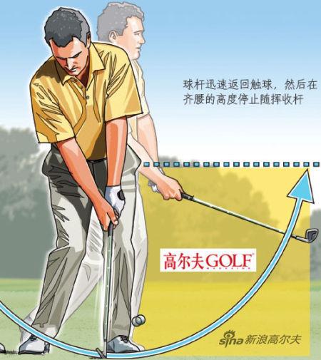 球杆迅速返回触球,然后在 齐腰的高度停止随挥收杆