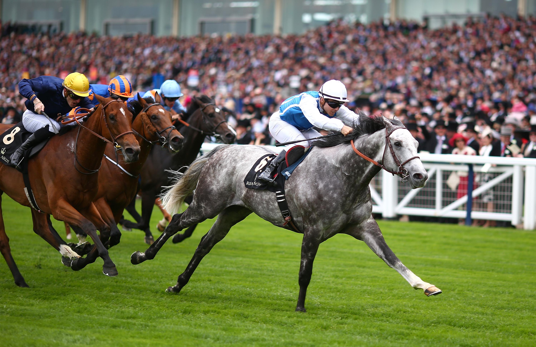 英国皇家爱斯科特赛马会 步步友折戟安妮女皇杯