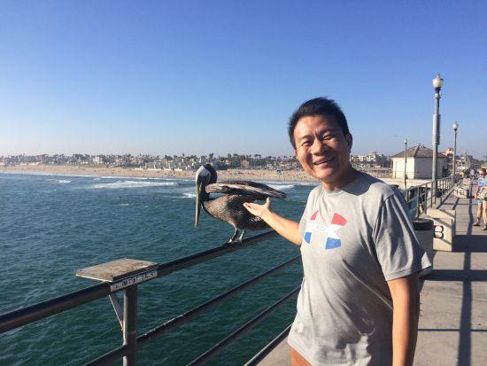 与在长桥栏杆上歇脚的大海鸟合影时它丝毫不害怕。
