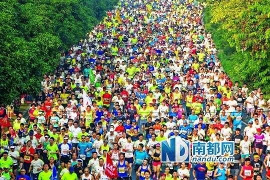 今年广马的临江大道赛道。