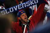 斯洛伐克球迷